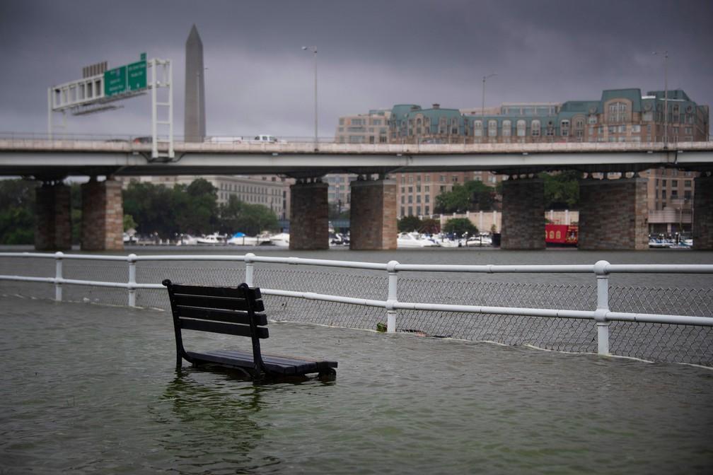 Parque ficou inundado após tempestade que atingiu Washington D.C. na segunda-feira (8)  — Foto: Jim Watson / AFP