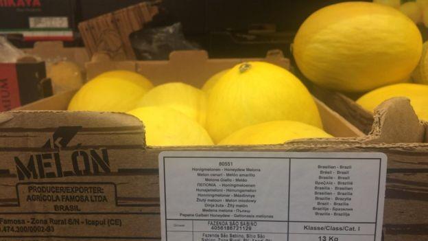 Produtores de melão, que vendem hoje para supermercados britânicos, tentariam reduzir imposto (Foto: RENATA MOURA / BBC NEWS BRASI)
