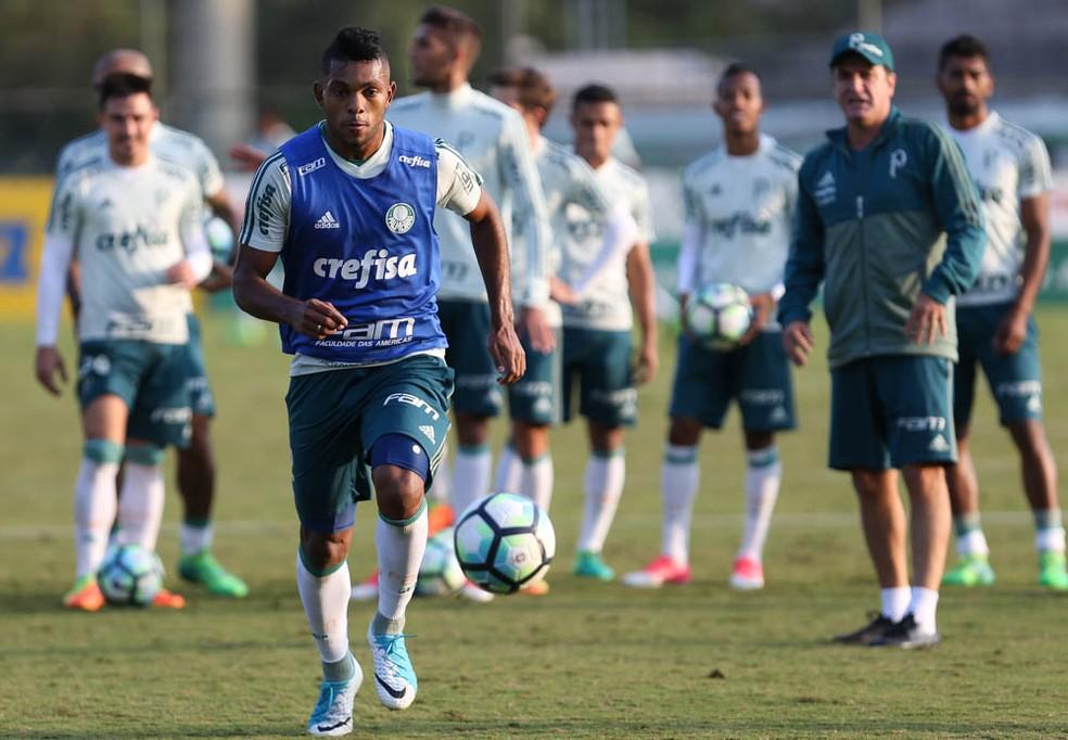 Colombiano tem tido dificuldade para se adaptar ao estilo de Cuca (Foto: Cesar Greco/Ag. Palmeiras)