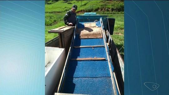 Três homens são detidos por extração ilegal de ouro em rio de Alegre, ES
