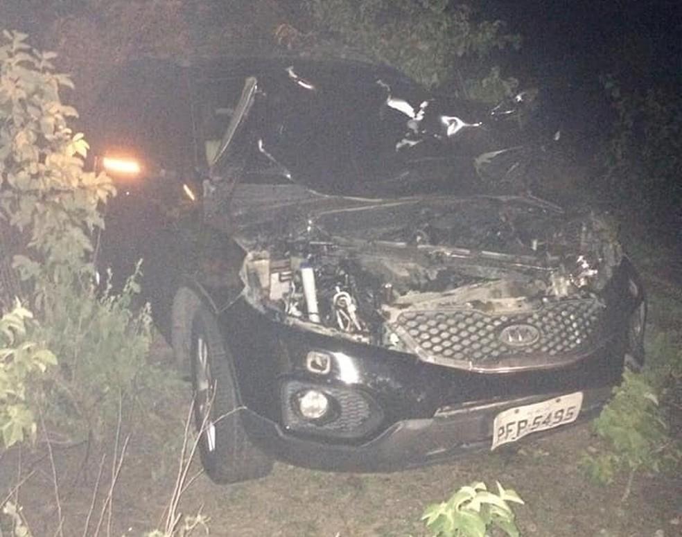 Carro colidiu contra dois animais na PE-340, em Betânia — Foto: WhatsApp TV Asa Branca/Reprodução