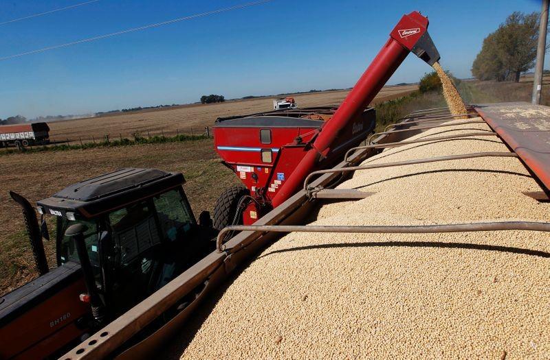 Importações de soja pela China aumentam 11% em abril com chegada de cargas atrasadas