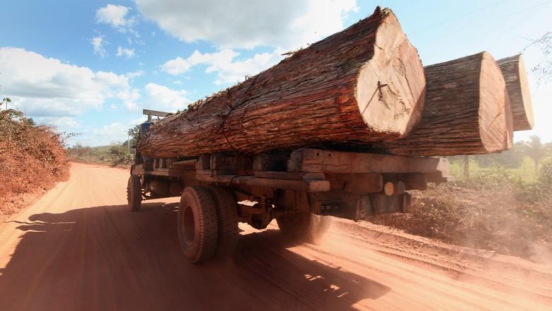 desmatamento-sustentabilidade-madeira-ilegal-apreensao (Foto: Mario Tama/Getty Images)