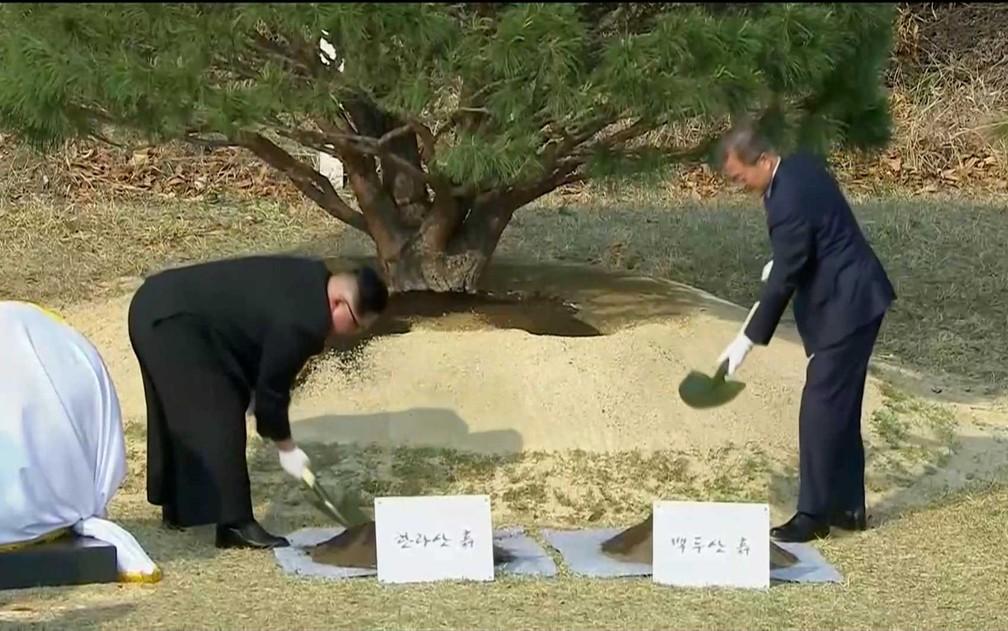 O presidente sul-coreano Moon Jae-in e o líder norte-coreano Kim Jong-un participação de cerimônia em que plantam árvore na aldeia de Panmunjom (Foto: Reuters)