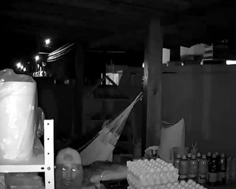 Ladrão foi flagrado por câmera de segurança de comércio quando realizava furto em Terra Santa — Foto: Divulgação