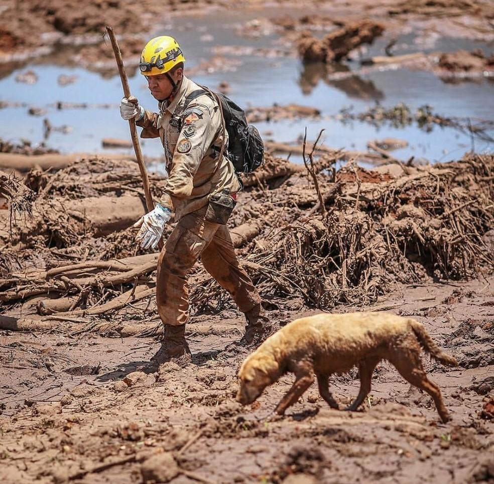 Bom beiro faz buscas em Brumadinho — Foto: Corpo de Bombeiros/Divulgação