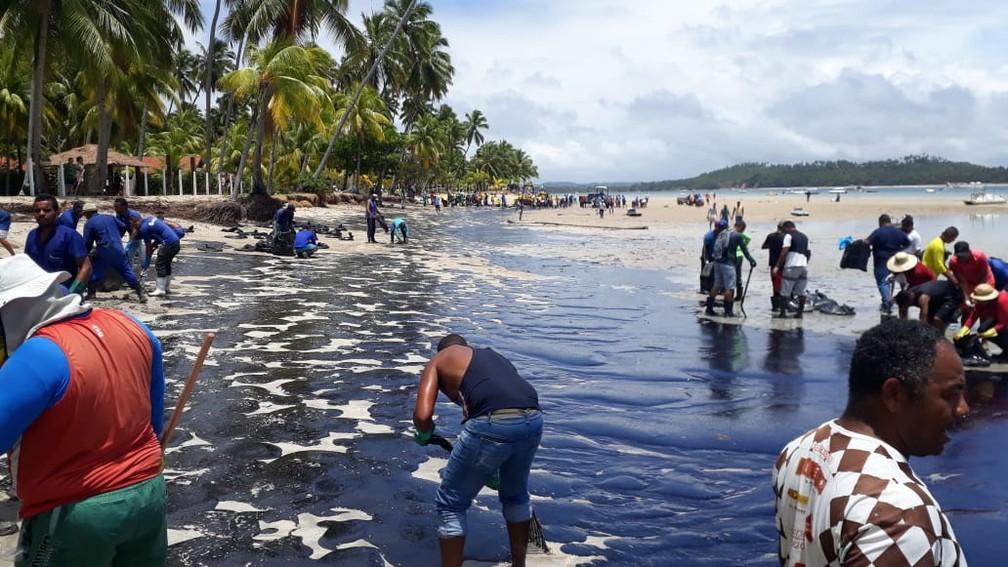 Equipes trabalham na limpeza da Praia dos Carneiros, no Litoral Sul de Pernambuco, nesta sexta-feira (18) — Foto: Wellington Pereira/TV Globo