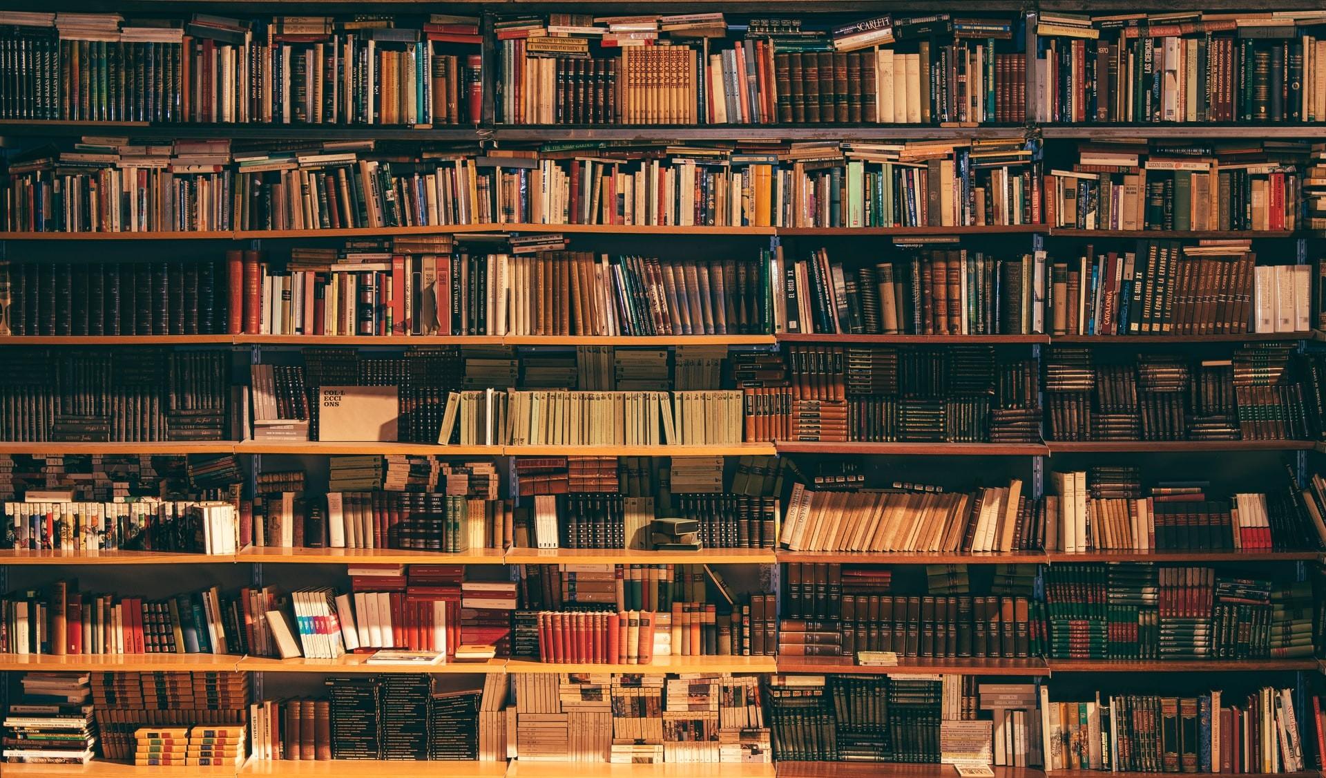 13 livros para devorar no mês de setembro (Foto: Alfons Morales/Unsplash)