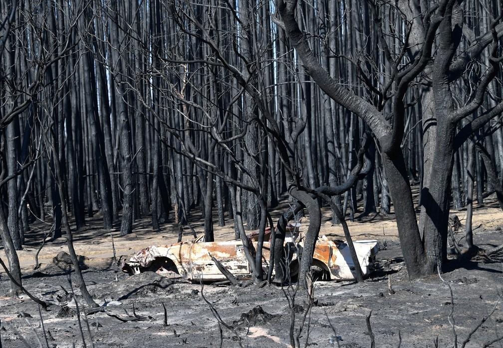 06 de janeiro - Danos das queimadas na Ilha de Kangaroo, na Austrália — Foto: David Mariuz/AAP Image/via Reuters