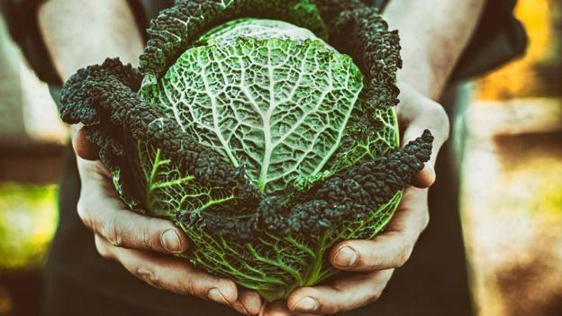 Adicionar repolho cru à dieta pode ser uma alternativa (Foto: GETTY IMAGES via BBC)