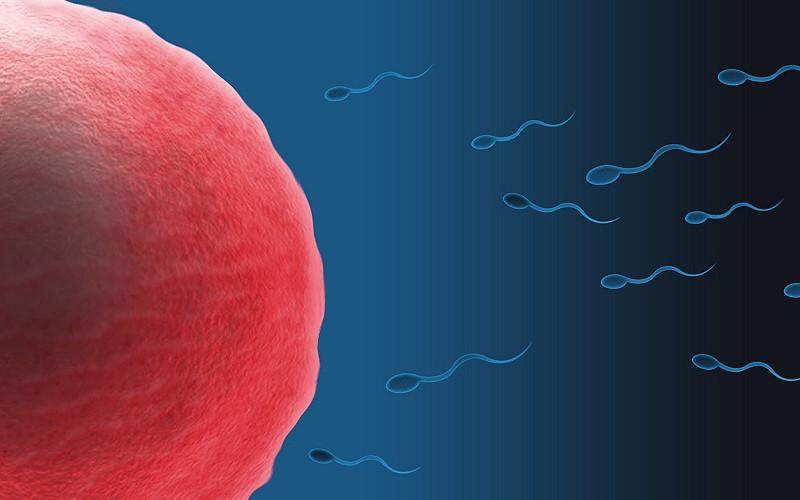 Cuide do seu esperma (Foto: Zappys)