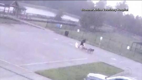 Homem desmaia ao ser atingido por raio no Texas, nos Estados Unidos