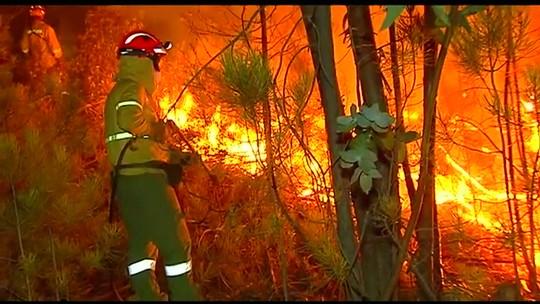 Portugal tenta combater grande incêndio florestal no sul do país