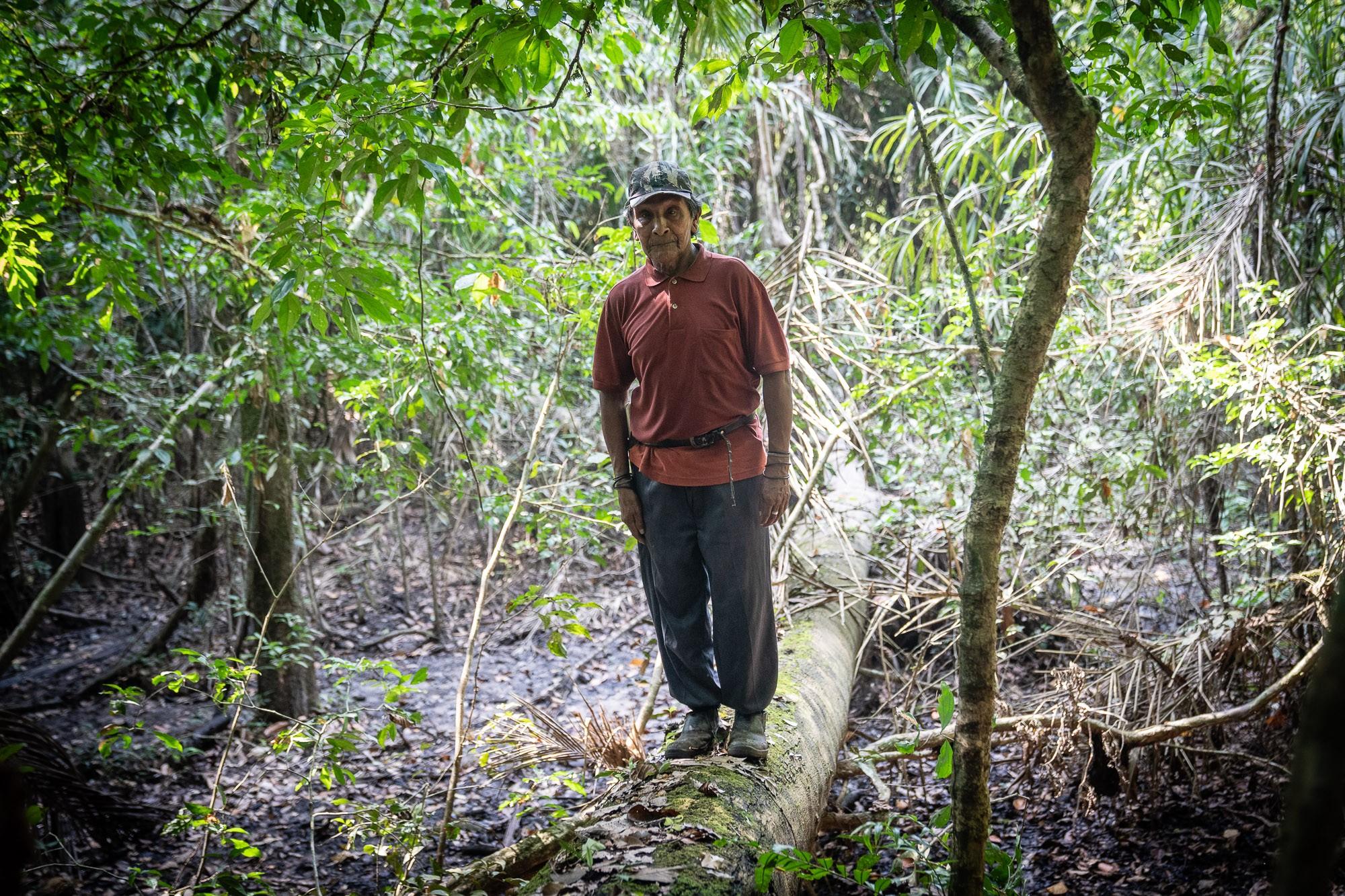 Aripa, Batiti e Eric: três gerações de karipunas que lutam contra invasões e  risco de genocídio - Notícias - Plantão Diário