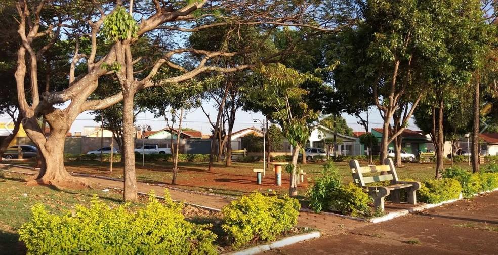 Muitas praças da área central de Macatuba foram arborizadas com mudas do projeto  — Foto: Arquivo Pessoal