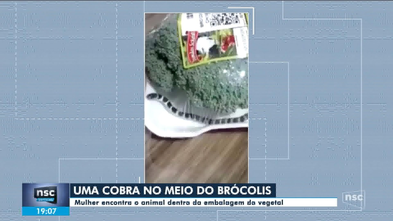 Mulher encontra cobra dentro da embalagem de brócolis