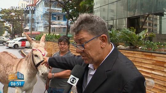 TCM investiga 26 prefeituras e 30 câmaras da BA que gastaram cerca de R$ 90 mil para comprar título de 'melhor gestor do país'