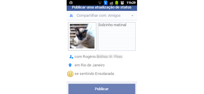Atualização de status no Facebook Lite (Foto: Reprodução/Raquel Freire)