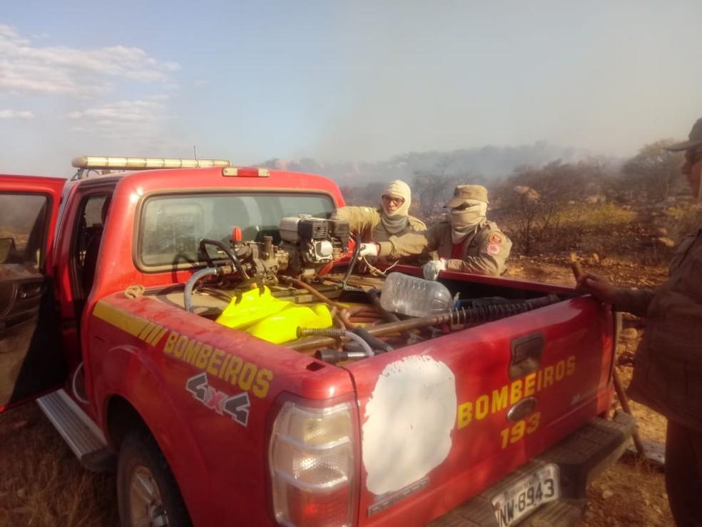 Incêndio florestal aconteceu na zona rural de Assú, no RN — Foto: Corpo de Bombeiros/Divulgação