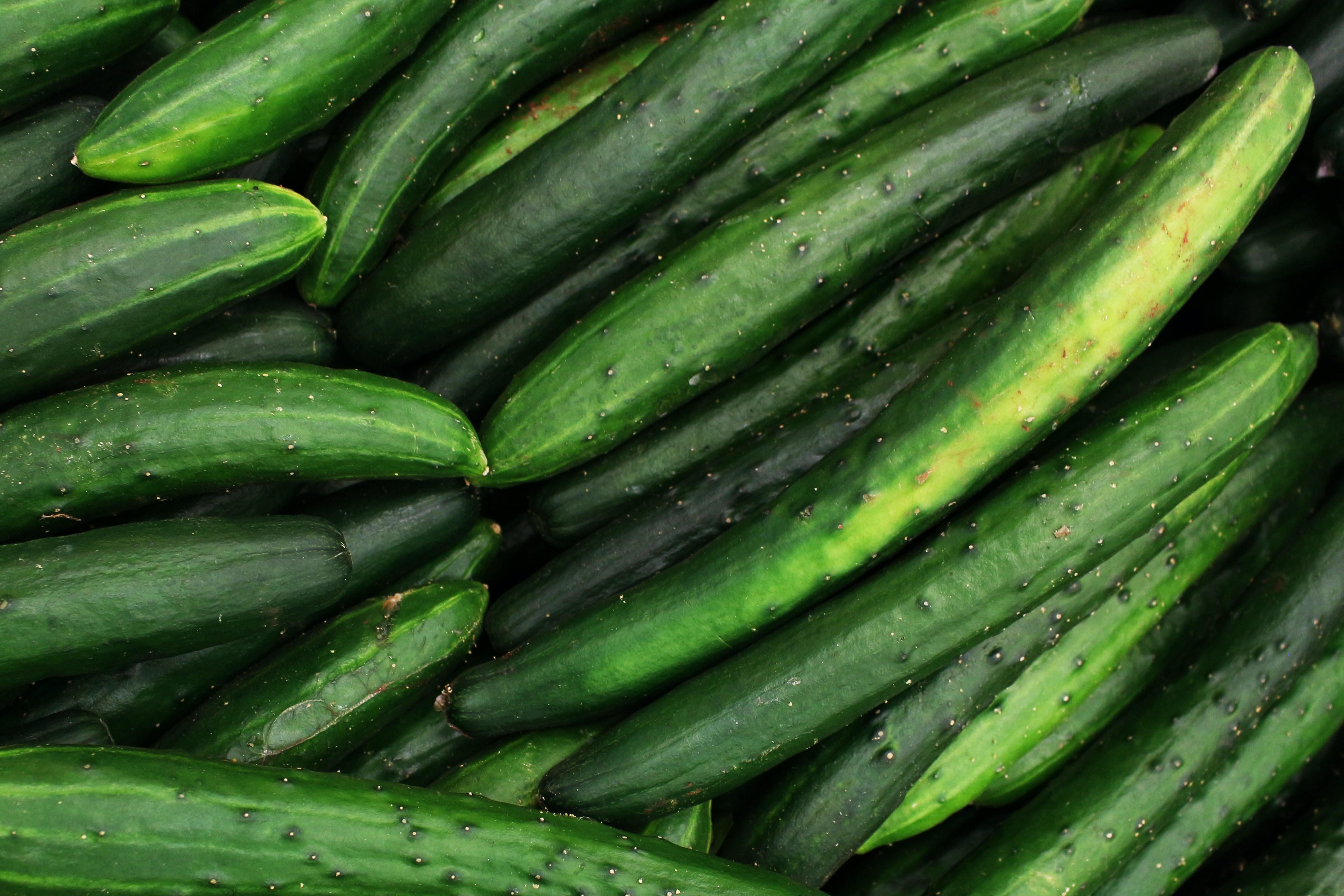 Deu pepino: entenda por que a hortaliça foi 'vilã' da inflação anual