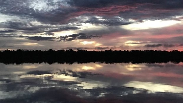 Na bacia do rio Içana, indígenas esperam que volta das ariranhas sinalize aumento da oferta de peixe (Foto: JOÃO FELLET/BBC)