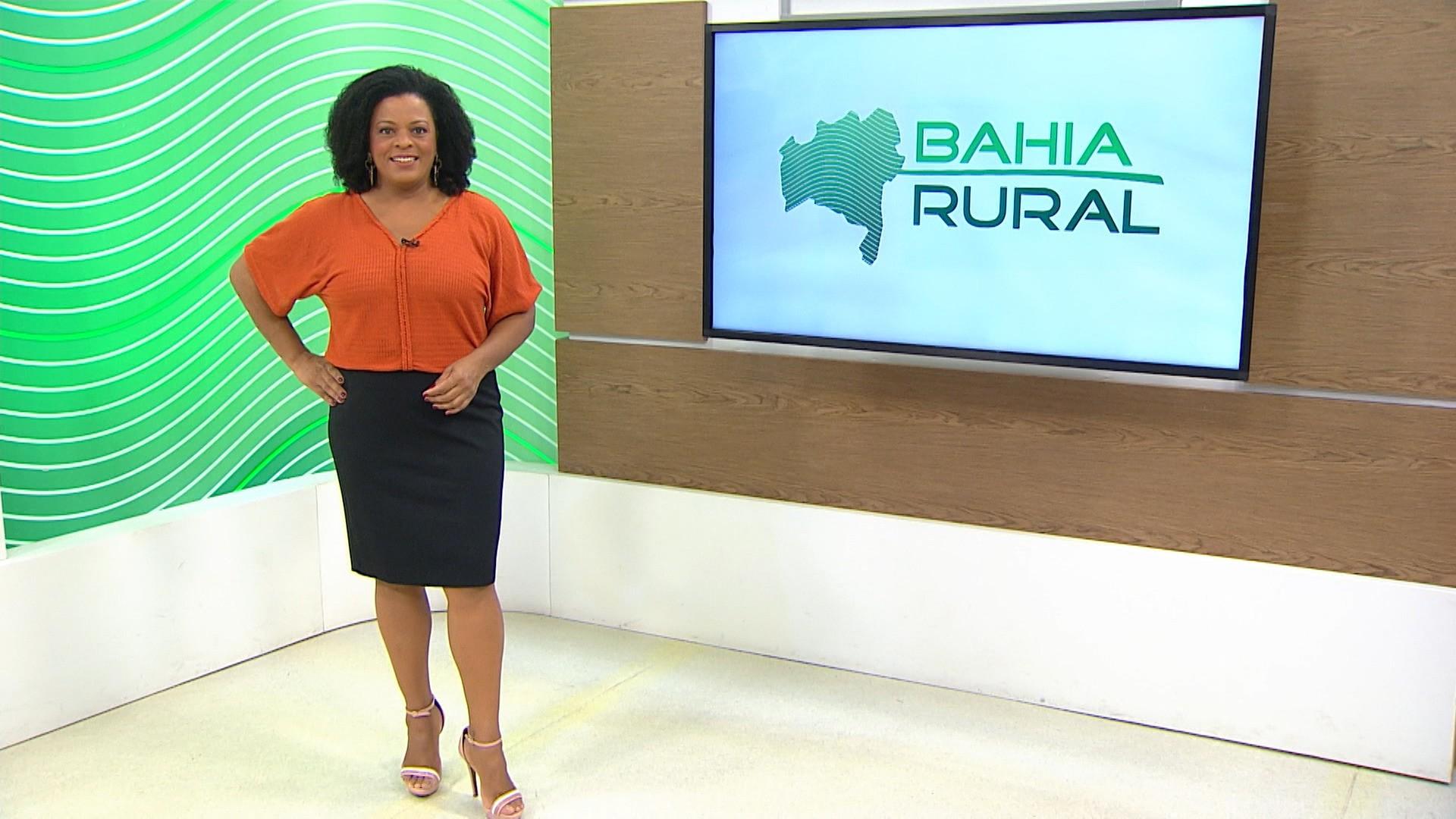 Vídeos do G1 e TV Bahia - domingo, 13 de junho de 2021