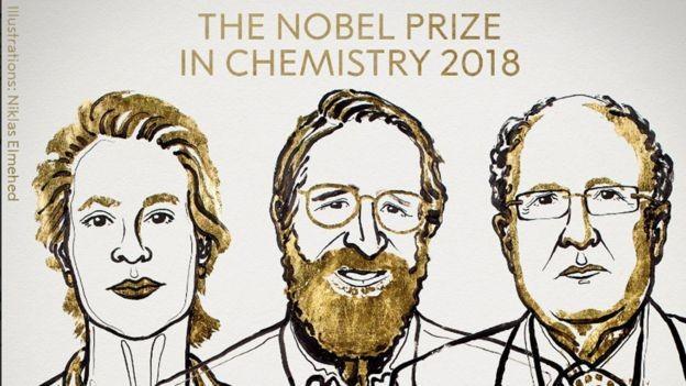 'Estamos no início da revolução de evolução dirigida', destacou a academia sueca (Foto: Prêmio Nobel via BBC News Brasil)