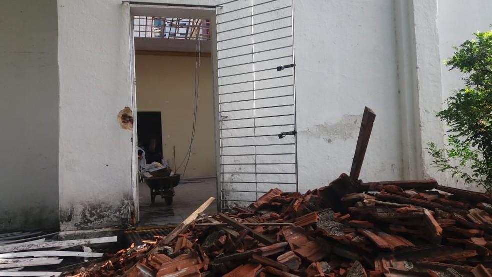 Mangueira retirada de jardim ficou pendurada no teto da Capela de Santa Edwiges, no Recife, que foi arrombada neste domingo (27) — Foto: Thalita Marques/ WhatsApp