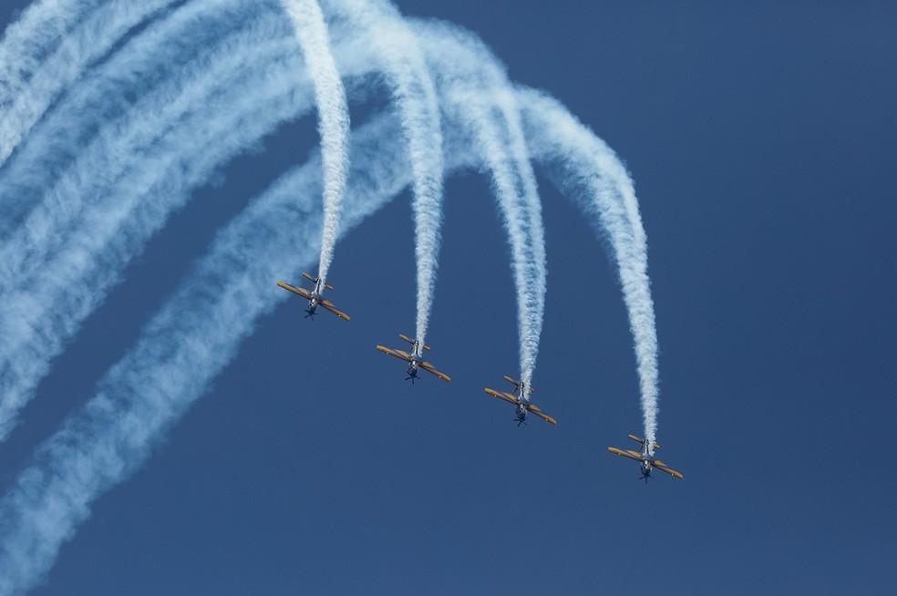 Aviões da Esquadrilha da Fumaça durante o desfile de 7 de setembro do ano passado (Foto: Alan Santos/PR)