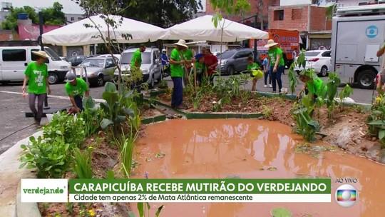 Parque Ecológico Imigrantes é inaugurado em SP; veja como agendar visitas