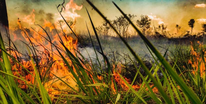 Com mais de 6,3 mil focos, Acre tem maior o número de queimadas dos últimos 4 anos, aponta Inpe