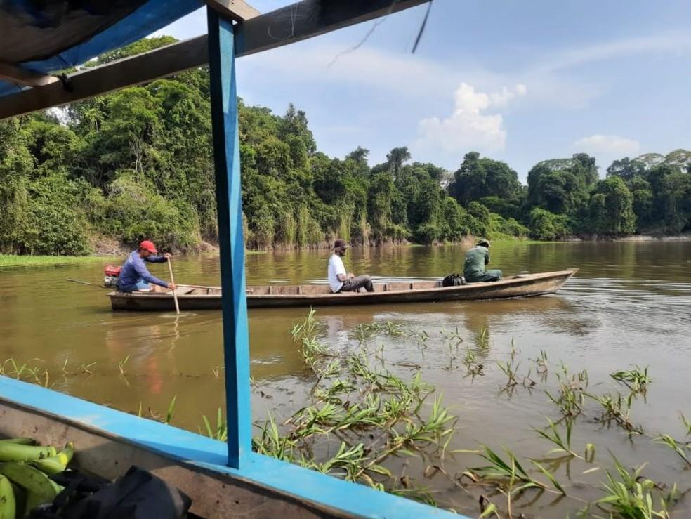 Levantamento analisa a possibilidade da superpopulação de pirarucus na Reserva Extrativista Rio Pacaás Novos. — Foto: Sedam/Divulgação