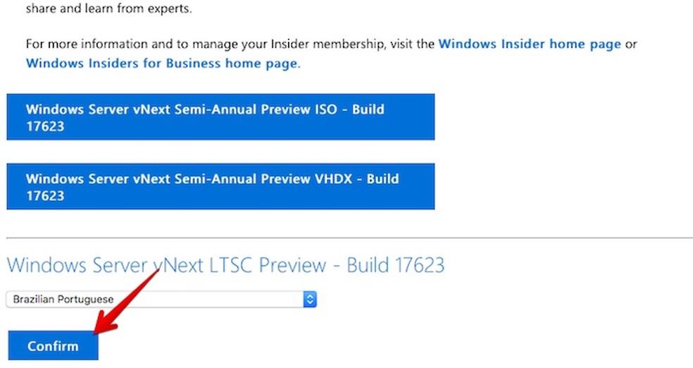 Selecione o idioma em que você quer baixar o Windows Server 2019 Preview (Foto: Reprodução/Helito Bijora)