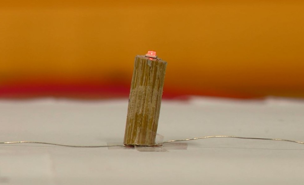 Bambu é utilizado como substituto de fios elétricos em Campinas (SP) — Foto: Reprodução/EPTV