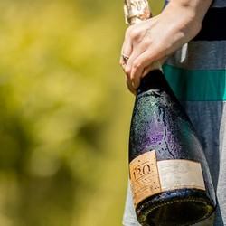 Espumante 130: feito com Chardonnay