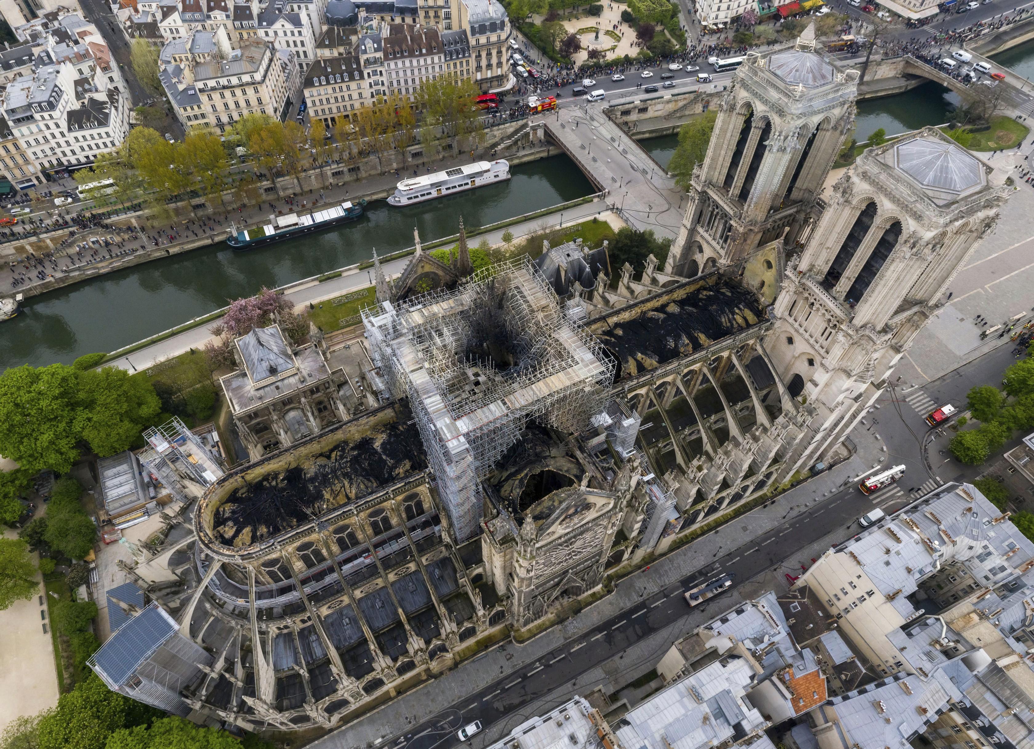 Abelhas da catedral de Notre-Dame escaparam de incêndio