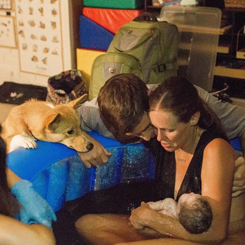 Ranger acompanhando o nascimento de Berkeley (Foto: Kristin Ann Photography)