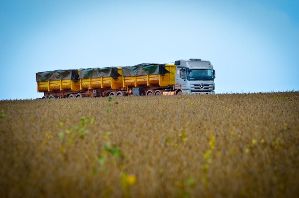 Os caminhão são divididos para as regiões do Brasil sob demanda  — Foto: Divulgação
