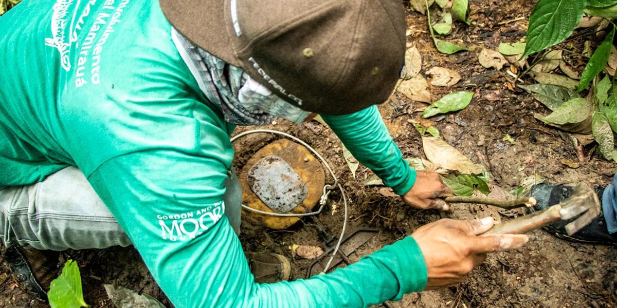 Prêmio inscreve projetos de pesquisa que busquem a conservação da Amazônia