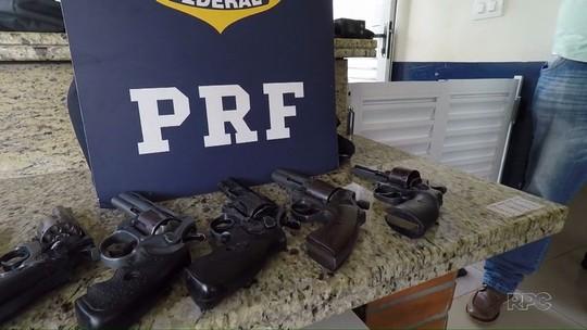 Com ajuda de cão farejador, polícia apreende armas de fogo em Santa Terezinha de Itaipu