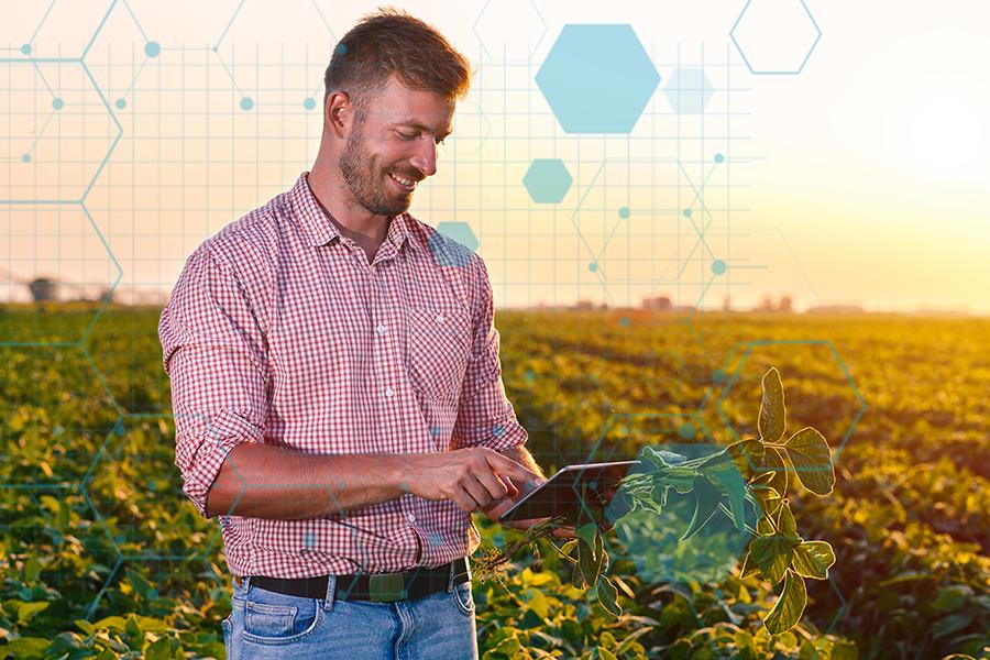 A Agricultura 4.0 é caracterizada pelo aproveitamento dos avanços tecnológicos no campo (Foto: Divulgação)