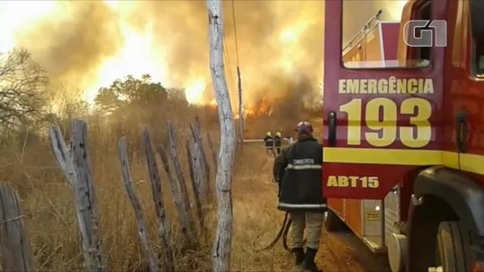 Bombeiros combatem incêndio florestal há seis dias e fogo atinge depósito de móveis no Sul do Piauí