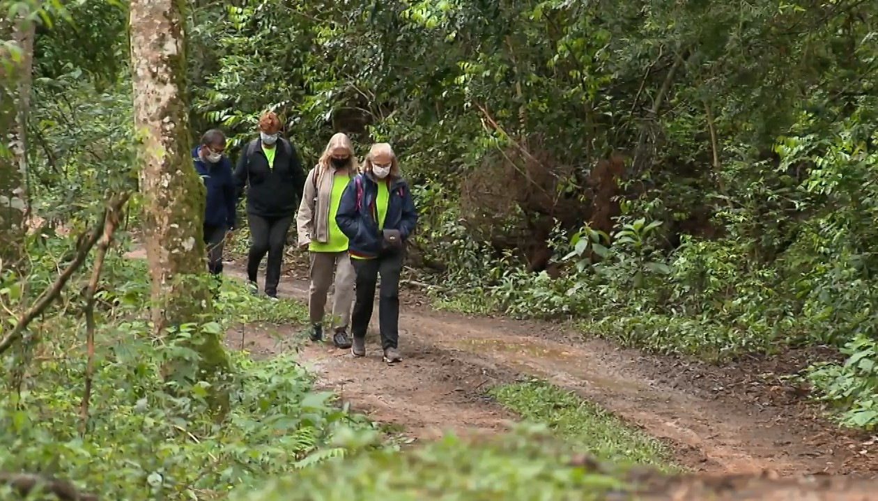 Circuitos das Caminhadas na Natureza são retomados após mais de um ano de paralisação, no Paraná