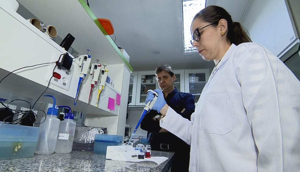 Pesquisadores do IFSC/USP em São Carlos desenvolveram técnica mais eficiente de quimioterapia usando nanotecnologia — Foto: Wilson Aiello/EPTV