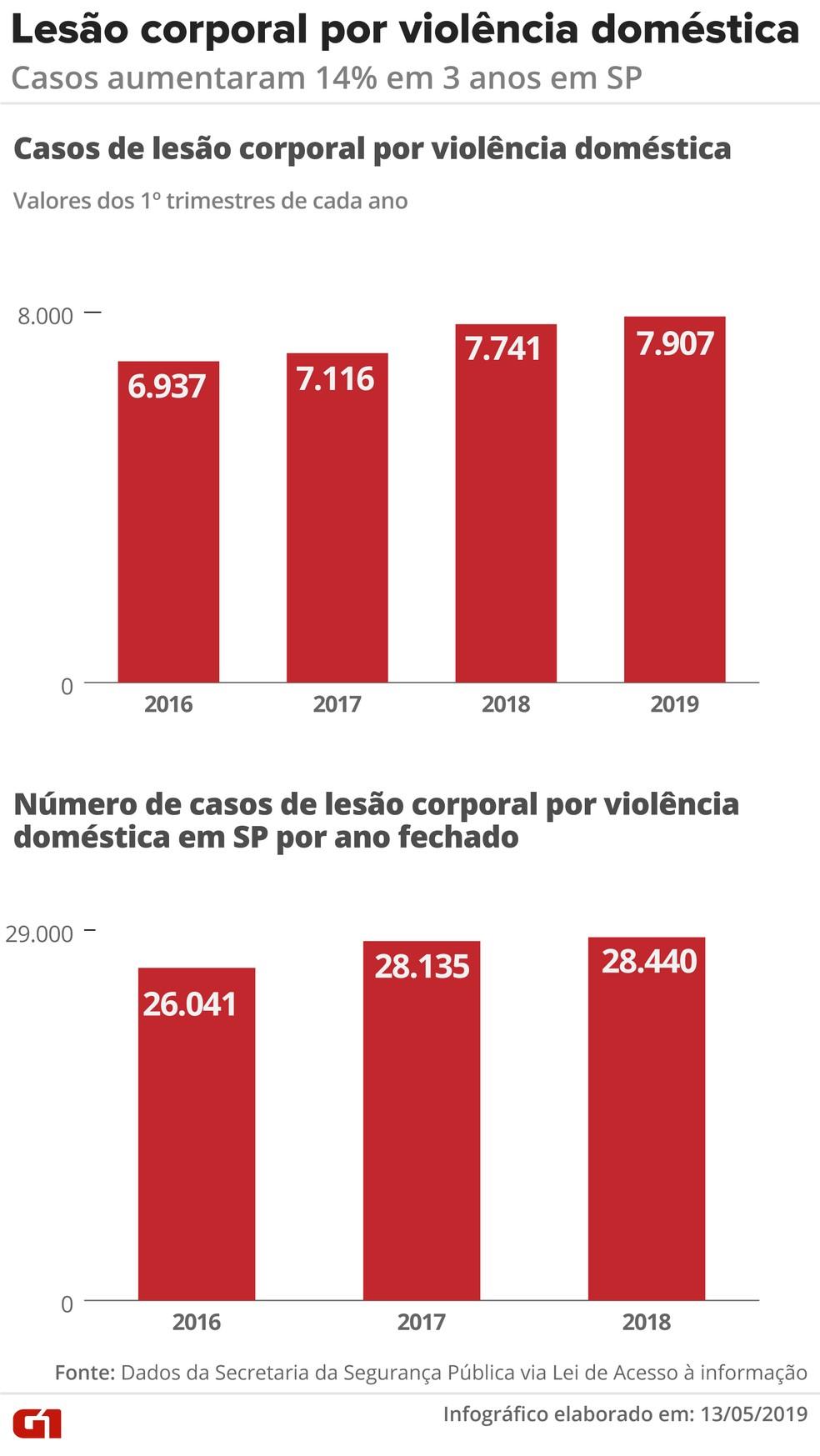 Lesão corporal por violência doméstica em SP — Foto: Igor Estrella/Arte G1