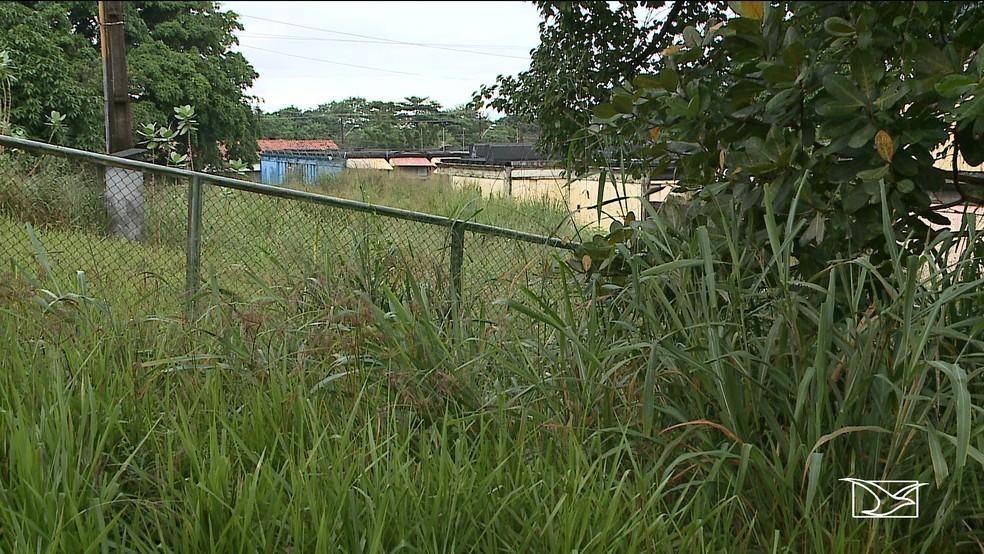 Mato cresce ao redor do Caic do bairro Cidade Operária na capital maranhense. — Foto: Reprodução/TV Mirante