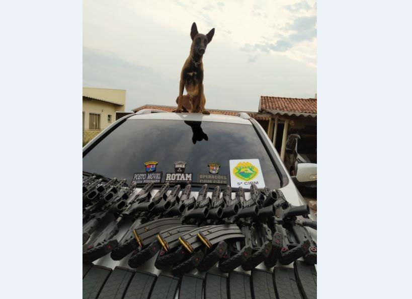Motorista é preso após cão da PM identificar 20 fuzis escondidos em fundo falso de carro, em Cianorte
