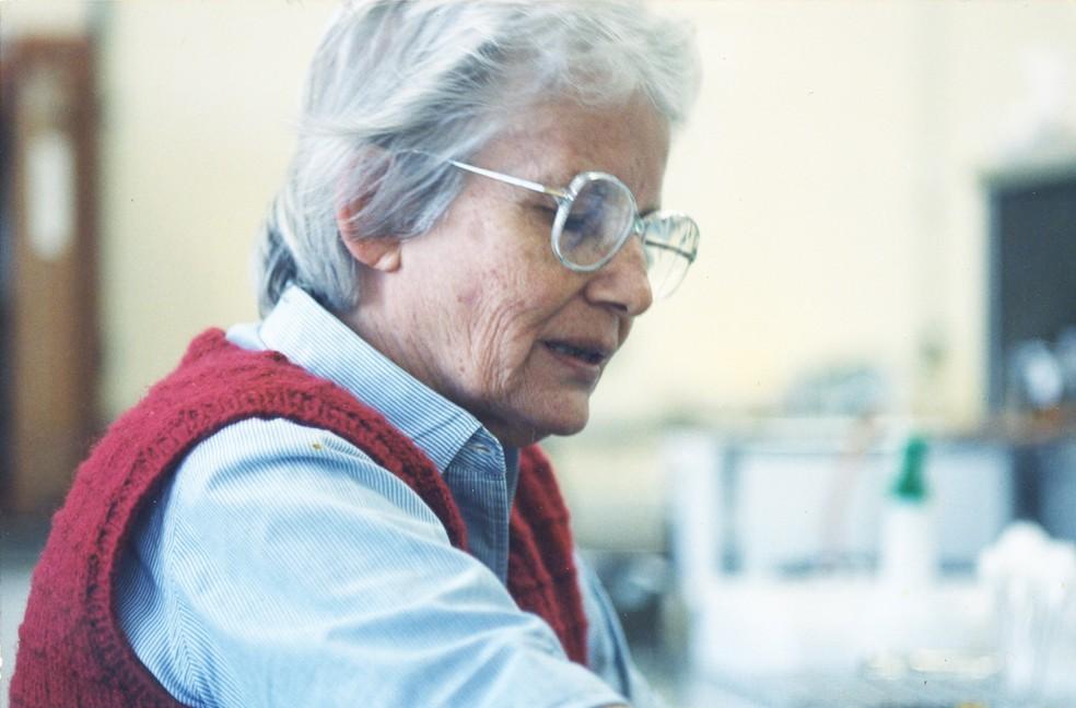 Johanna Döbereiner no laboratório da Empresa Brasileira de Pesquisa Agropecuária (Embrapa). — Foto: Divulgação