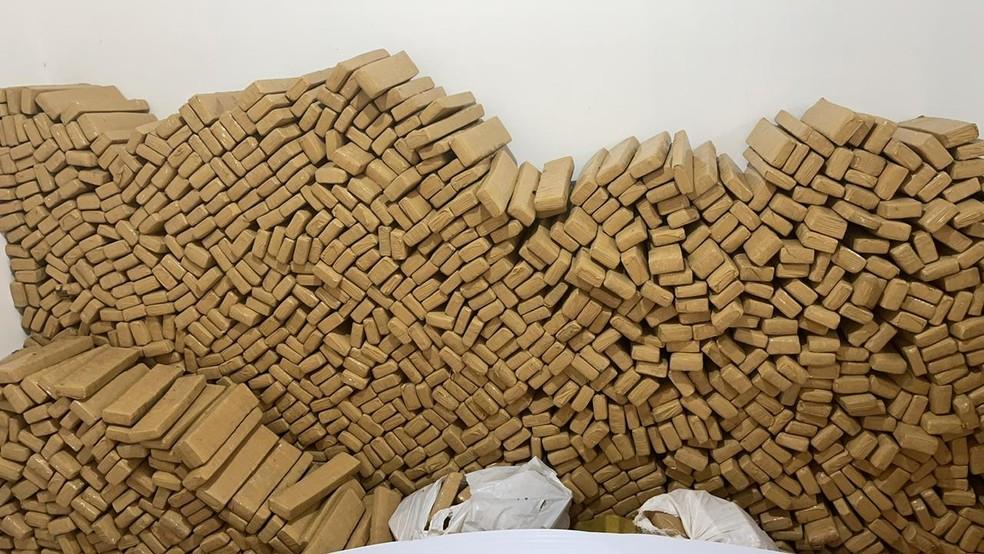 Parte das 9,5 toneladas de maconha apreendidas em Ponta Porã — Foto: Defron/Divulgação