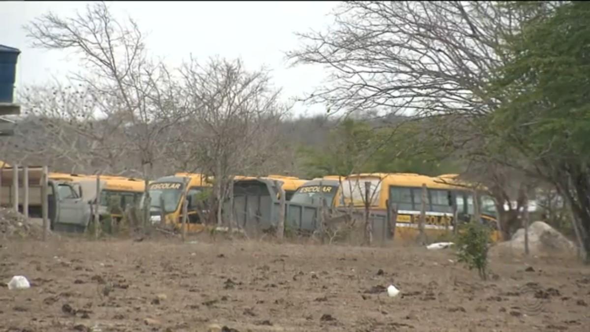 Ônibus escolares abandonados são encontrados em terreno particular em Campina Grande